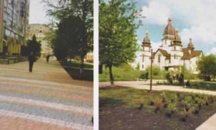 З нових громадських просторів у Львові крадуть висаджені рослини