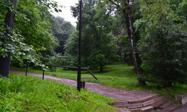 Мешканців закликають не відвідувати сихівські парки. Зони оброблятимуть від кліщів