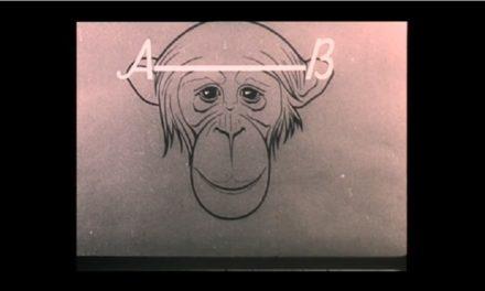 Втрачений український фільм «Людина і мавпа» віднайшли у Японії