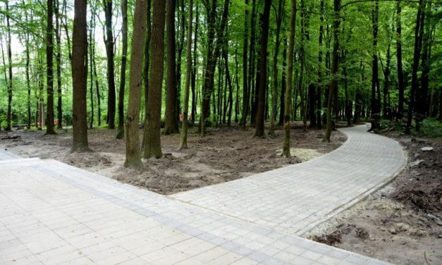 Парки Сихова вже обробили від кліщів