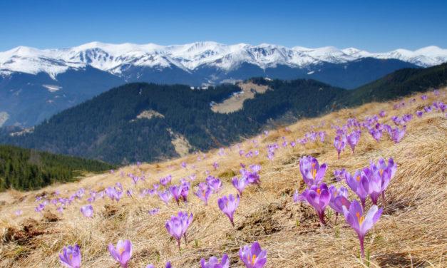 5 найцікавіших туристичних маршрутів весни
