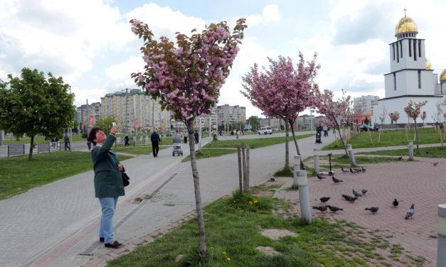 Сихівчан закликають долучитися до опитування щодо розвитку парку Івана Павла ІІ