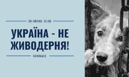 У Львові відбудеться Всеукраїнська акція на захист тварин