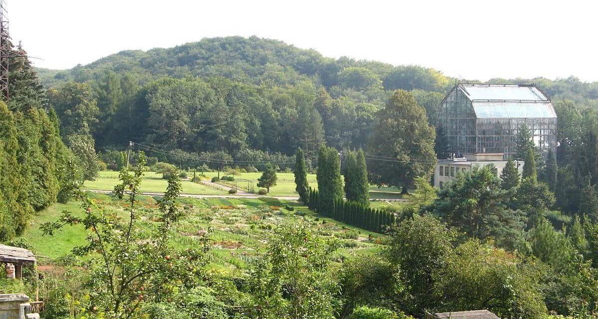 Сьогодні у Ботанічному саду День відкритих дверей