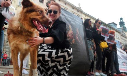 У Львові активісти виступили на захист тварин. Фото