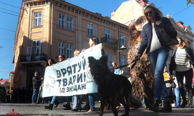 У Львові небайдужі вийшли на захист прав тварин. Фоторепортаж