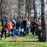 Толоку у Сихівсьому лісі перенесли через обробку парків від кліщів