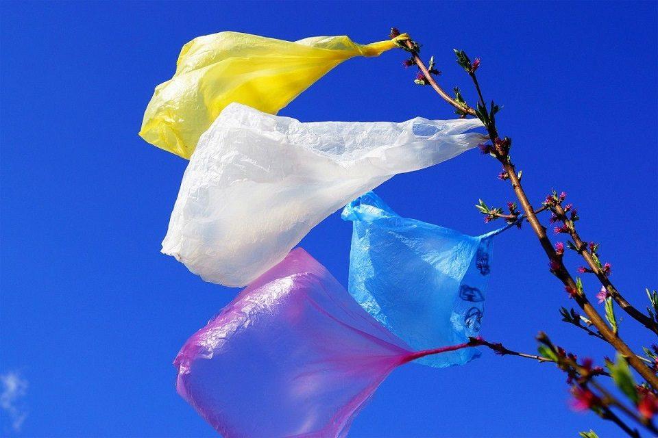 У Славській ОТГ планують відмовитися від поліетиленових пакетів