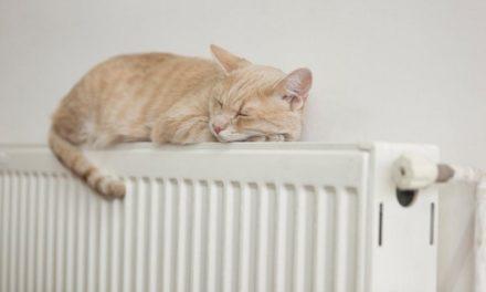 Завтра у Львові відновлять опалювальний сезон