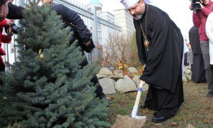 Глава УГКЦ закликає відмовитися від живих ялинок на свята