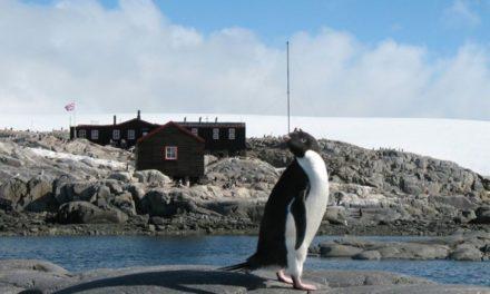Журналіст-мандрівник зі Львова зніматиме фільм про науковців в Антарктиді