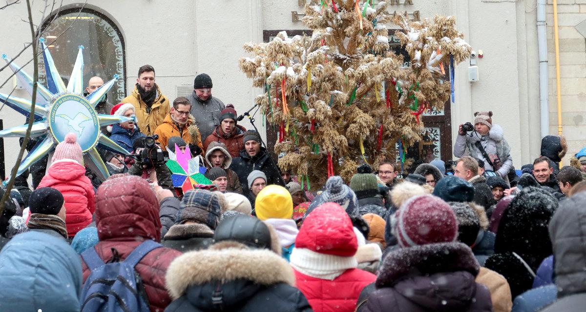У Львові встановили різдвяний дідух. Фото