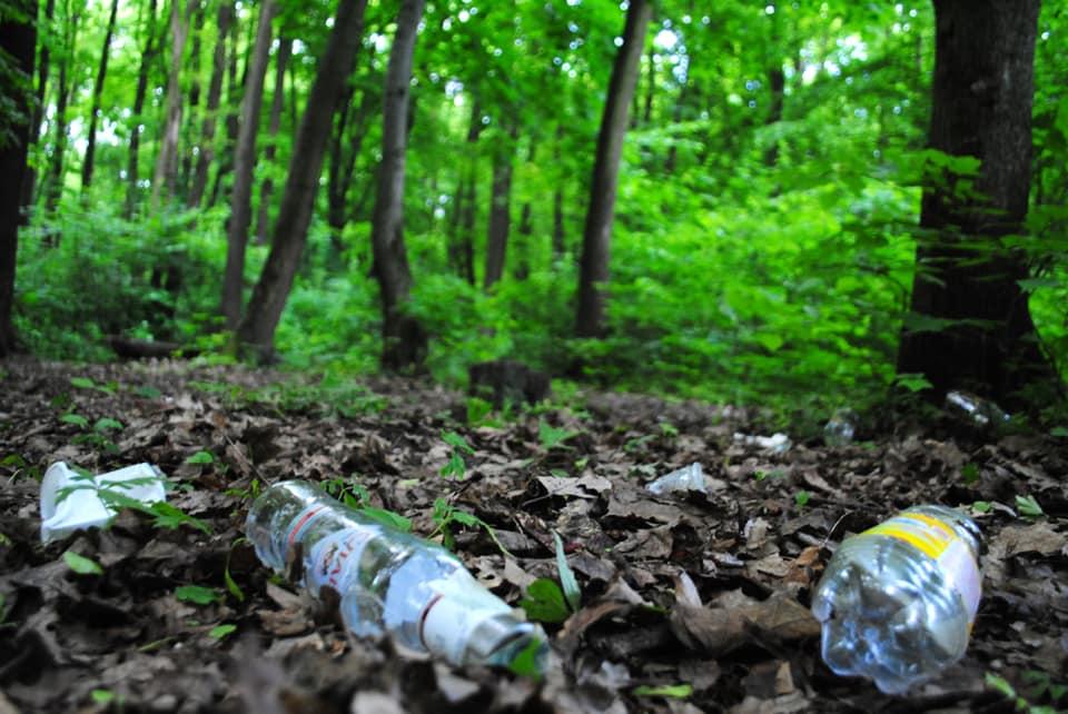 Сихівчан кличуть на толоку до Сихівського лісу