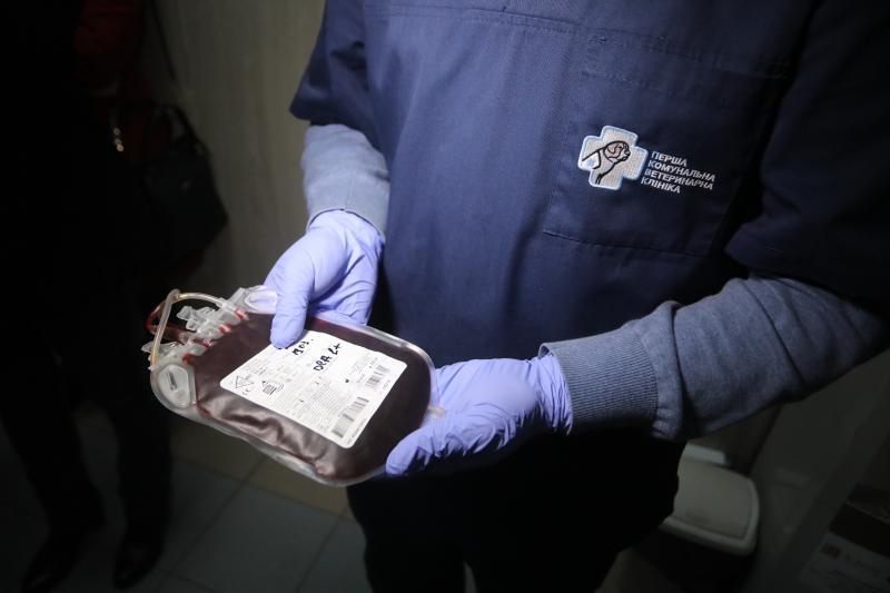 У Львові запрацював банк крові для тварин