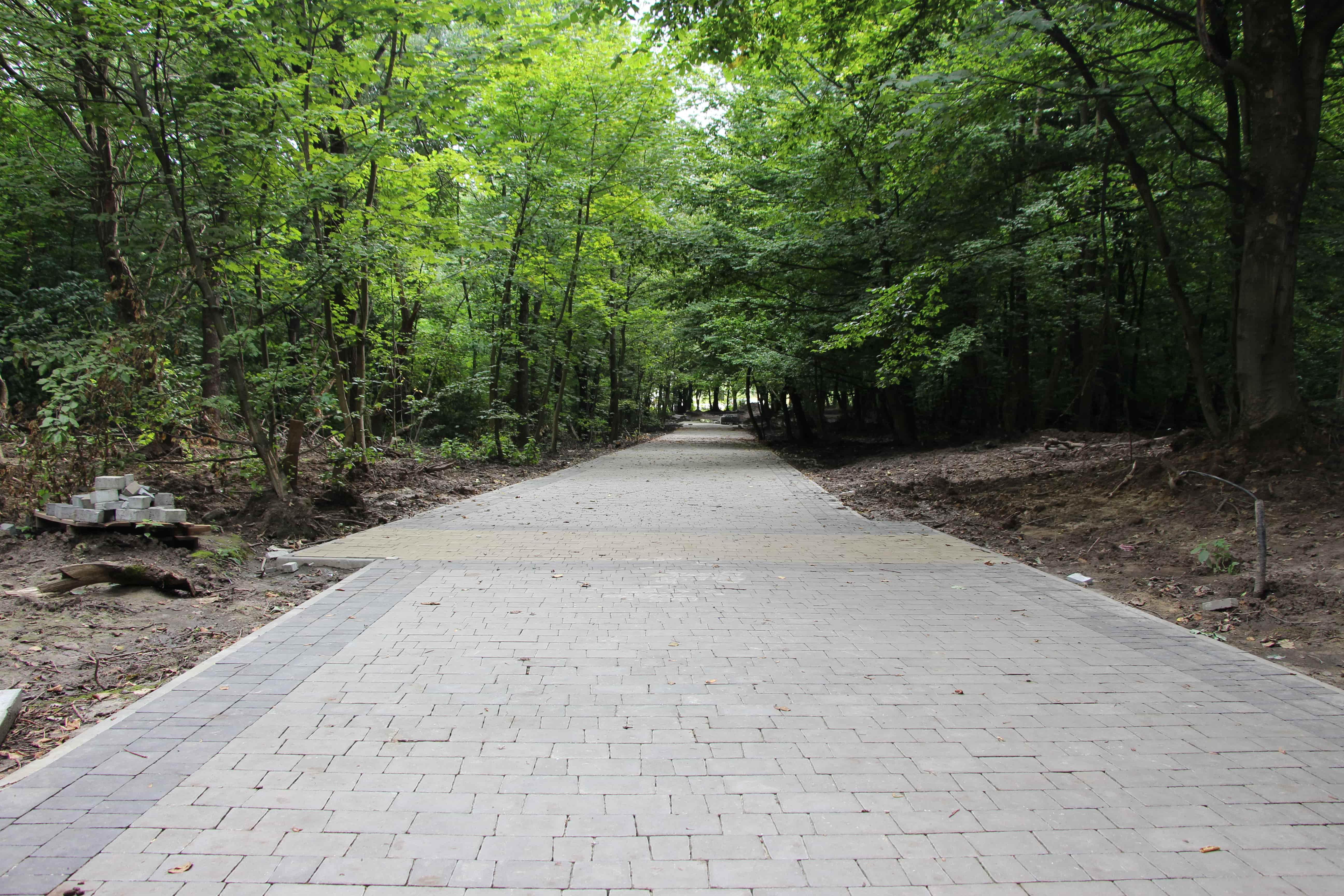 Львів'яни зареєстрували петицію за збереження парку Івана Павла ІІ