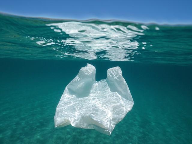 Верховна Рада підтримала законопроєкт про заборону пластикових пакетів