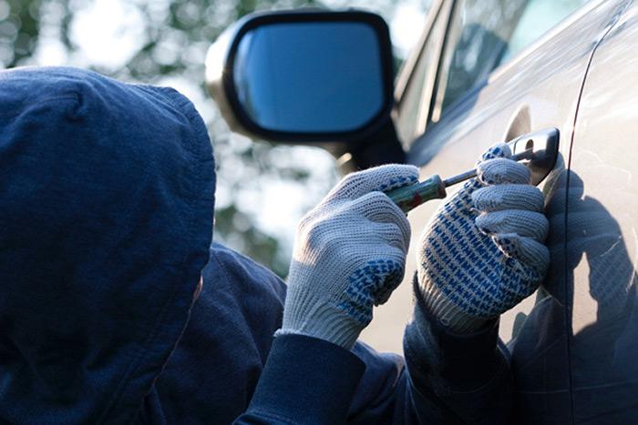 Сихівські поліцейські заарештували автозлодіїв