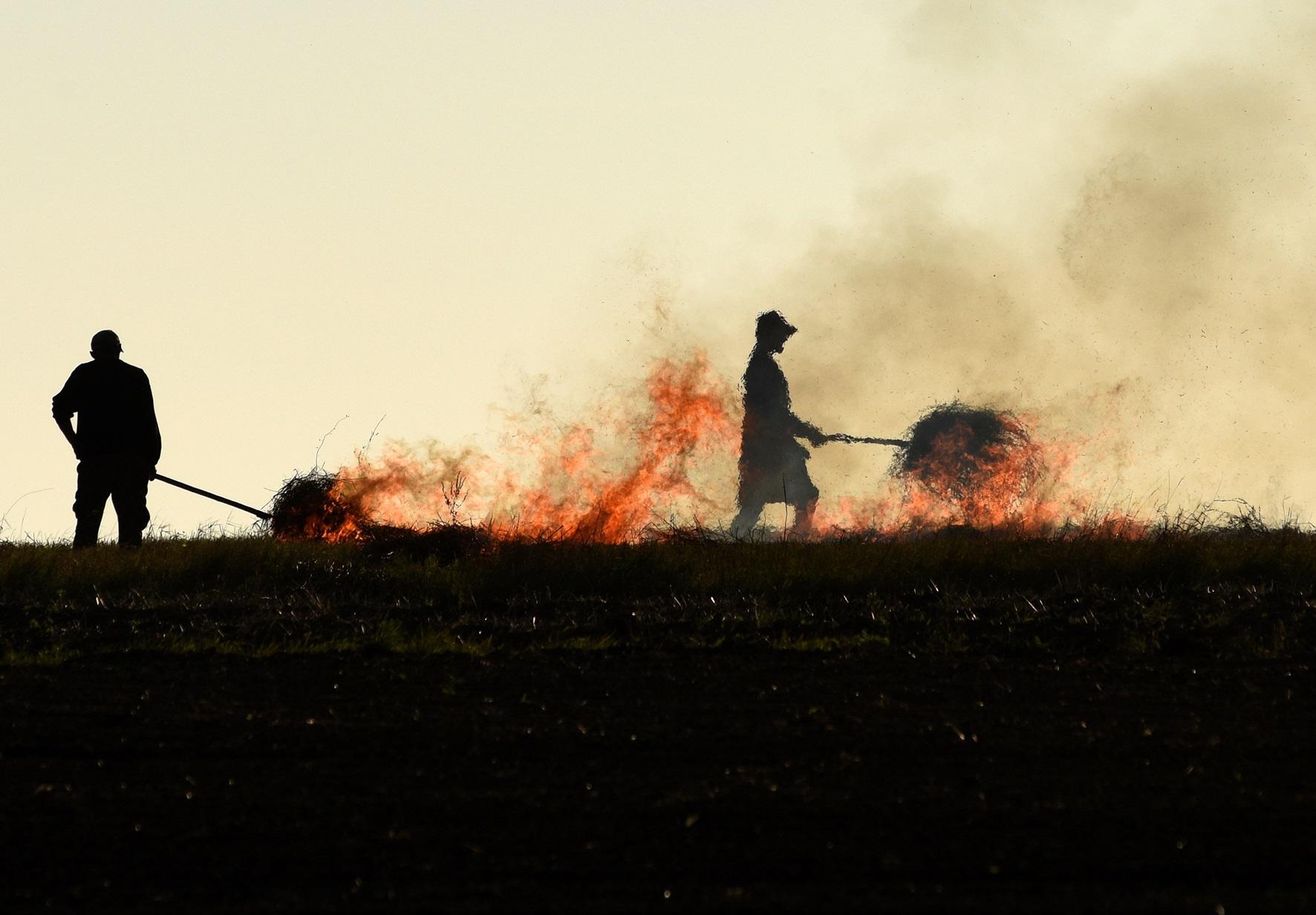 ЛОДА пропонує збільшити штраф за спалювання сухої трави до 42 тис грн