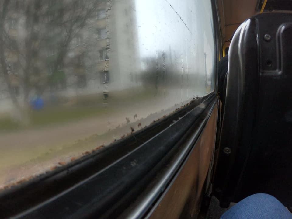 АТП №1 закликають помити автобуси для комфорту пасажирів, а не для піару (Фото)