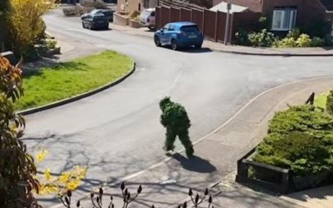 В Англії людина замаскувалася під кущ, щоб вийти на вулицю під час карантину