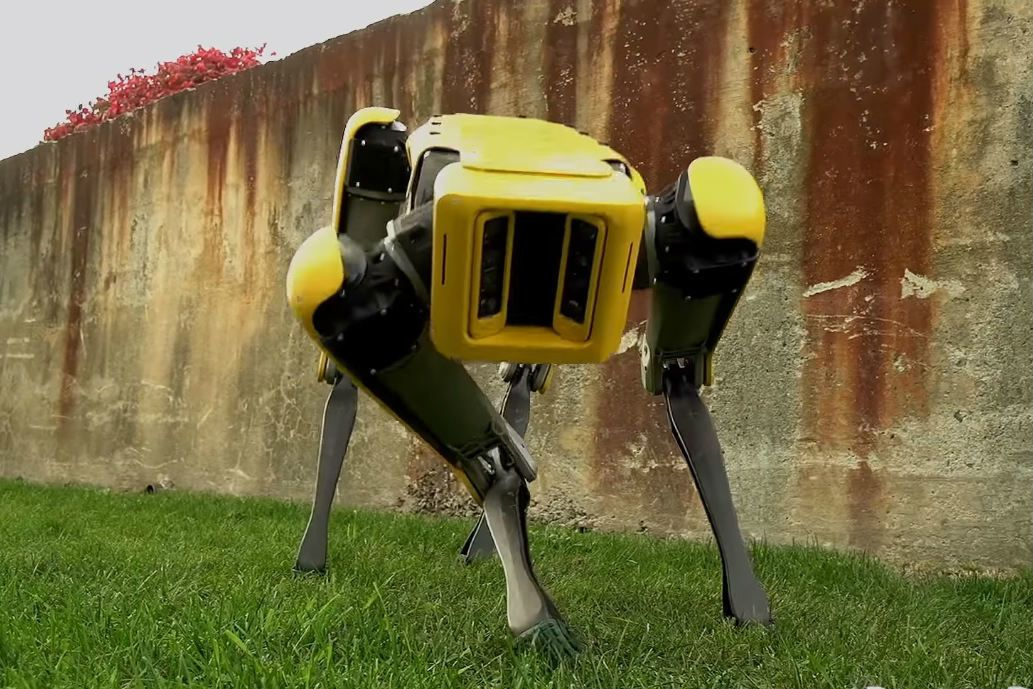 В Сінгапурі собака-робот закликає жителів дотримуватись карантинних обмежень