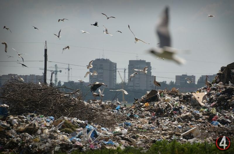 День відмови від пластику: зробіть крок назустріч майбутньому!