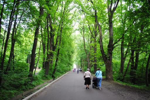 В парку ім. Івана Павла ІІ завершили облаштування центральної алеї