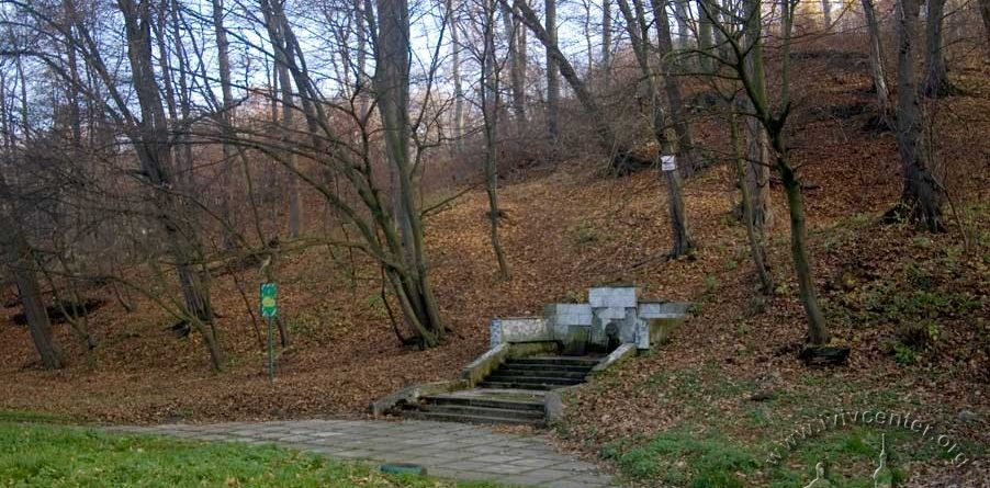 Львів'янин зареєстрував петицію щодо покращення одного з сихівських парків