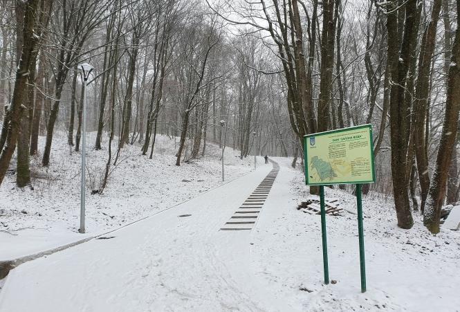 У парку «Залізна вода» відновлюють потічки